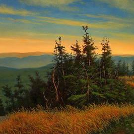 High In The Adirondacks by Barry DeBaun