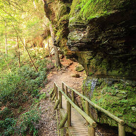 Hiking trail in Red River Gorge by Alexey Stiop