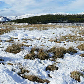 Hills Of Cromdale From Moorland by Phil Banks