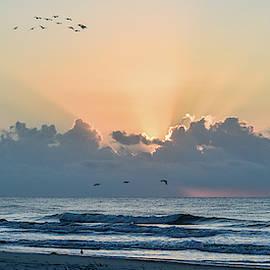 Hilton Head Sunrise Panorama by Mary Ann Artz