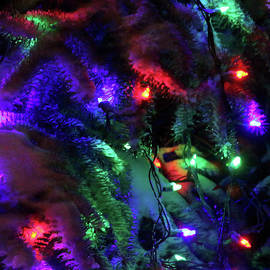 Holiday Lights-7855 by Gary Gingrich Galleries
