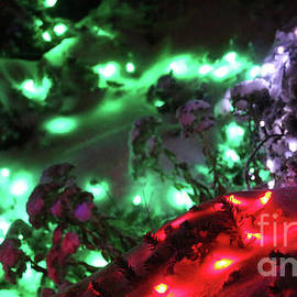 Holiday Lights-8162 by Gary Gingrich Galleries