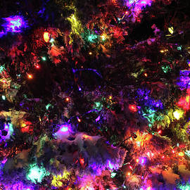 Holiday Lights-8258 by Gary Gingrich Galleries
