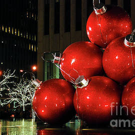 NAJE Foto - Nelly Rodriguez - Holiday Ornaments