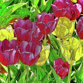 Holland Ridge Tulip Farm # 39 by Allen Beatty