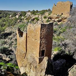 Holly Tower At Hovenweep by Tranquil Light Photography