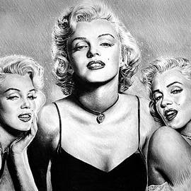 Hollywood Legends Marilyn by Andrew Read