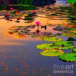 Homage to Monet - Water Lilies 5 by Miriam Danar