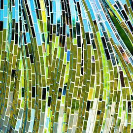 Horizontal - Mirror, Mirror 4 by Wendy Wilton