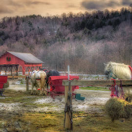 Joann Vitali - Horse and Carriage Ride - Stowe Vermont