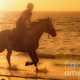 Horse Riding At Sunset by Arterra Picture Library
