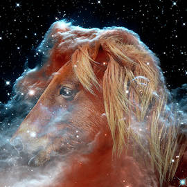Horsehead Nebula with Horse Head Outer Space Image