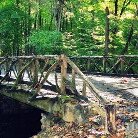 Horseman Bridge by Tru Waters