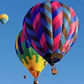 Hot Air Balloons by Allan Van Gasbeck