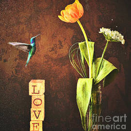 Hummingbird Love by Tina LeCour