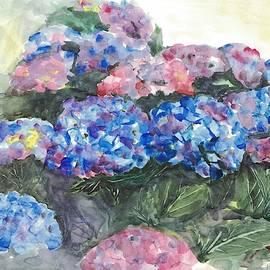 Hydrangea  by Hiroko Stumpf