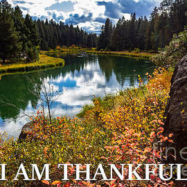 I Am Thankful by G Matthew Laughton