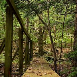I Crossed This Bridge With My Father by Alida M Haslett