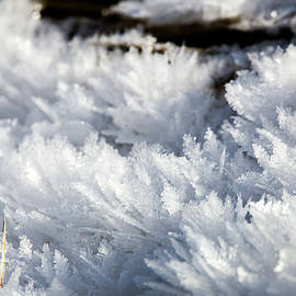 Ice Crystals by Michael Chatt