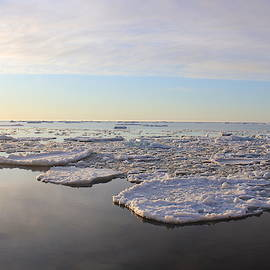 Ice Pancakes by Two Bridges North
