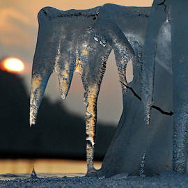 David T Wilkinson - Ice Shapes at Sunset