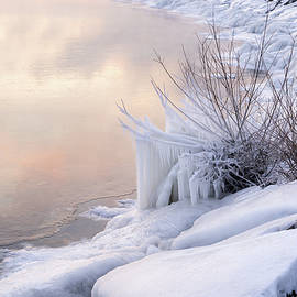 Icy - Coral Pink and White on the Lakeshore by Georgia Mizuleva