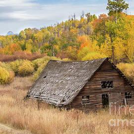 Idaho Barn by Leslie Wells