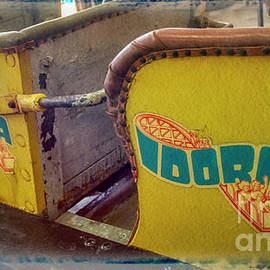 Idora Park Memorabilia Roller Coaster Ride by Janice Pariza