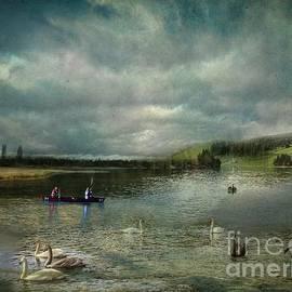 Idyllic Swans Lake by Eva Lechner