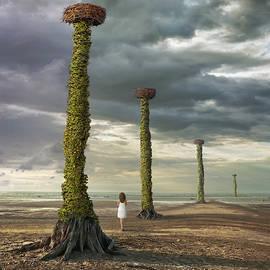 In search of the Nest by Dariusz Klimczak