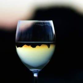 Inverted Landscape In Wine Glass by Ron Chilston