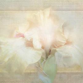 Iris Hint by Terry Davis