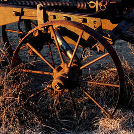 Iron Wheel by William Moore