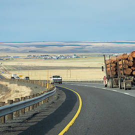 Irony is a Log Truck and a Treeless Plain by Mary Lee Dereske