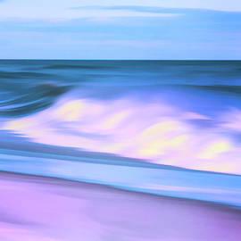 Geraldine Scull - Island Beach state park shore digital art