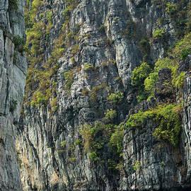 Island Cliffs in Halong Bay Three by Bob Phillips