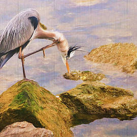 Itchy  Neck Heron by Ola Allen