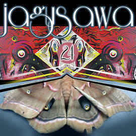 Jagusawa 24 by John Jr Gholson