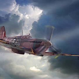 Spitfire the plane that saved the world by James Vaughan