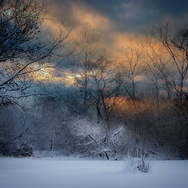 January Michigan by Evie Carrier