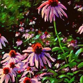 Jeannette's Cone Flowers by Rick Hansen