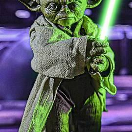 Jedi Master Yoda by Jeremy Guerin