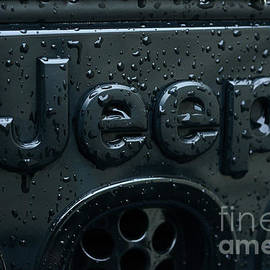 Jeep Willys Grill wet and black by Paul Ward