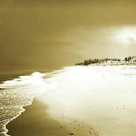Jensen Beach, Fl Monochromatic by Slawek Aniol