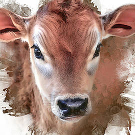 Jersey Baby by Donna Kennedy