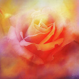 Jewel Colored Rose by Terry Davis