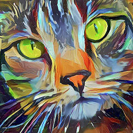 Peggy Collins - Jocko the Colorful Tabby Cat