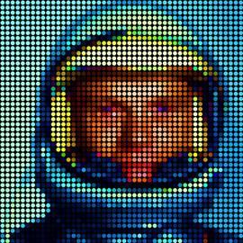 John Glenn, Astronaut by Donald Stevenson