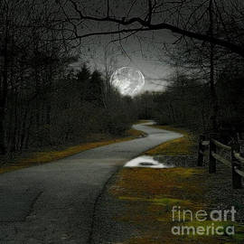 Join Me In A Moonlight Walk by Rod Jellison