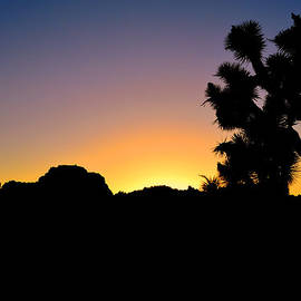 Joshua Tree National Park Sunset by Glenn McCarthy Art and Photography